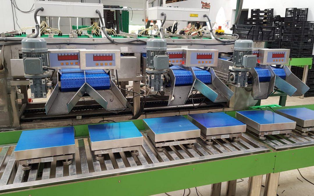 Rover-Bas, S.L. fabricante de sistemas de dosificación y pesaje.